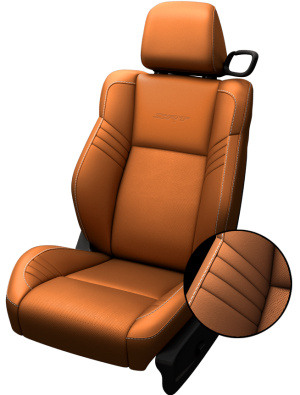 sepia-seats_png_pagespeed_ce_7TYBahwlpo